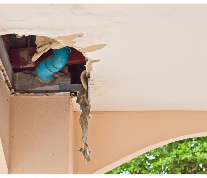 Mold Remediation What If My House Is Only a Little Moldy?