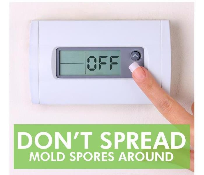Why SERVPRO FAQs About the Mold Containment Process
