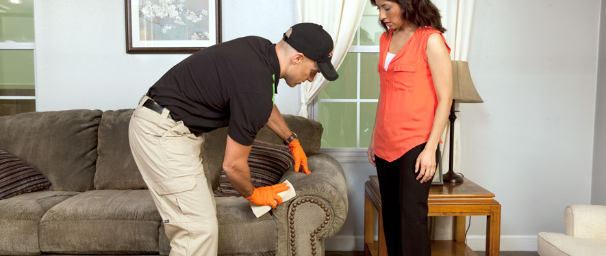 Cookeville, TN carpet upholstery cleaning