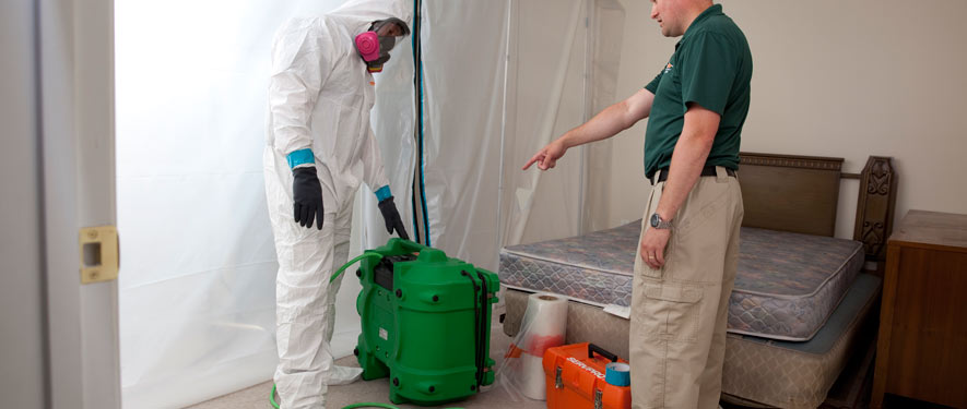 Cookeville, TN mold removal process